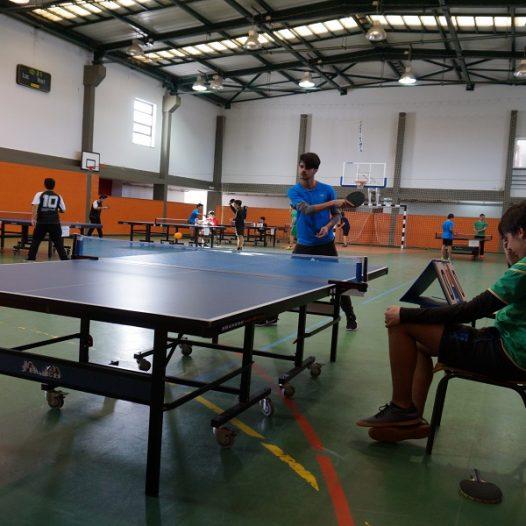 Utilização de Instalações Desportivas | 2019-2020